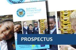 Read our school prospectus