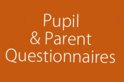 Pupil and Parent Questionnaires