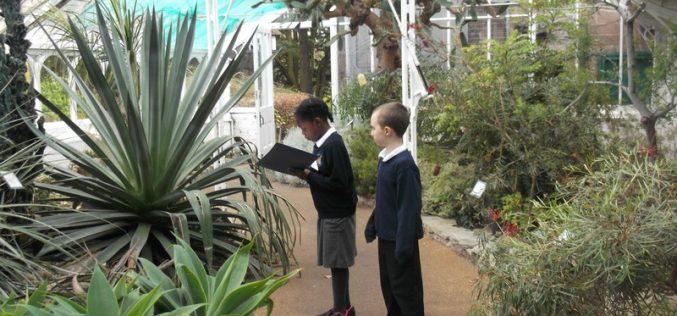 Photos of Year 3's Botanical Gardens trip