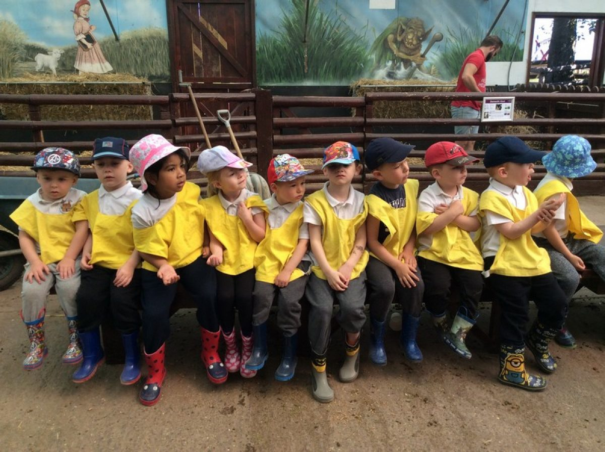 Nursery trip to Hatton Country World