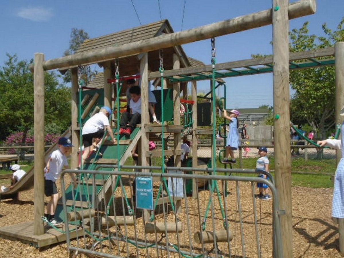 Year 2's Twycross Zoo trip